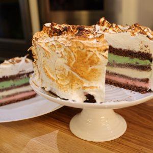 Chocolate and Ice Cream Cake