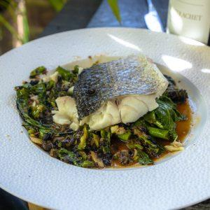 Steamed Seabass Steak, Black Bean with Broccolini