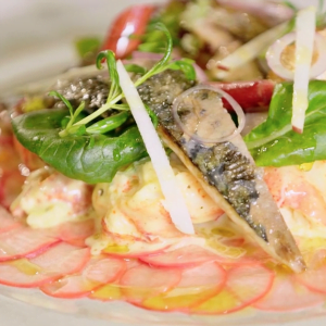 Warm Lobster Mackerel Salad with Pickled Turnip and Rhubarb