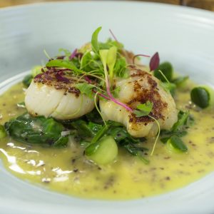 Scallops with pulse beurre blanc and pickled cucumber