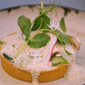 SUMMER VEGETABLE, PARMESAN SHORTBREAD, MUSHROOM VELOUTE TART